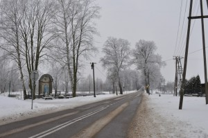 Całkiem zimowa droga do Skarszew