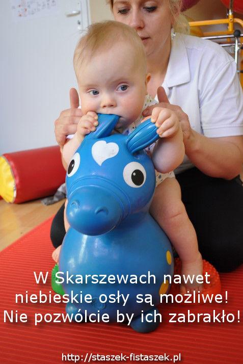Ratujmy Skarszewy